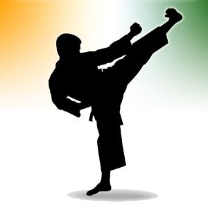 Naas Karate Club