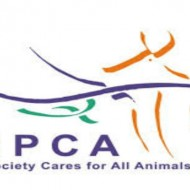 ISPCA National Animal Cruelty Helpline