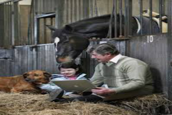 Kildare International Equestrian Center